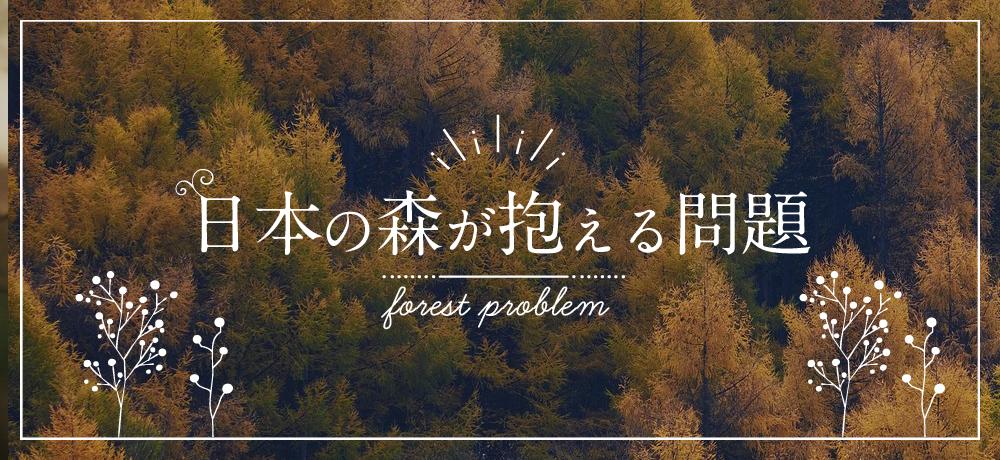 岐阜県の木