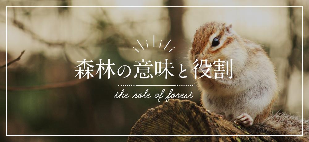森林の役割