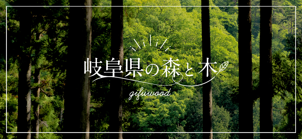岐阜県の森と木