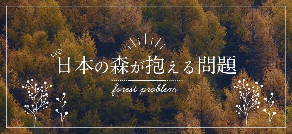 日本の森が抱える問題